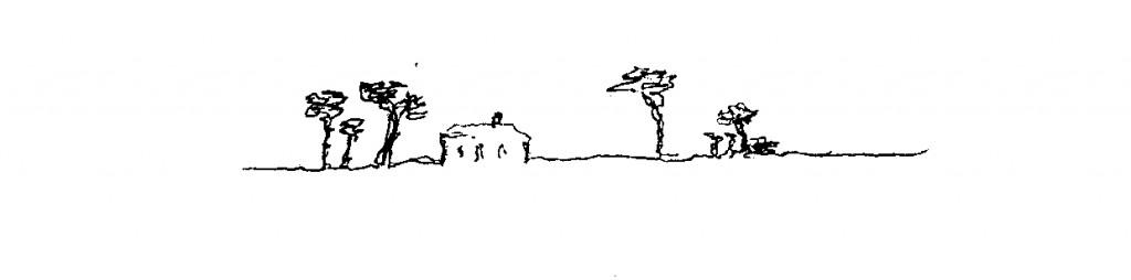 Airial dans la lande nue