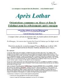 Après Lothar - Vignette