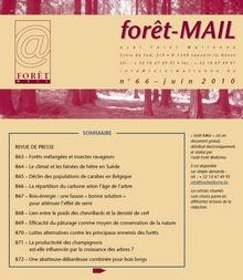 Forêt-Mail - Vignette