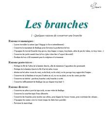 Les branches - Vignette