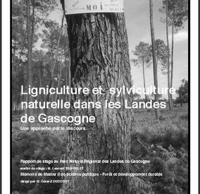 Ligniculture et sylviculture naturelle dans les Landes de Gascogne - Vignette