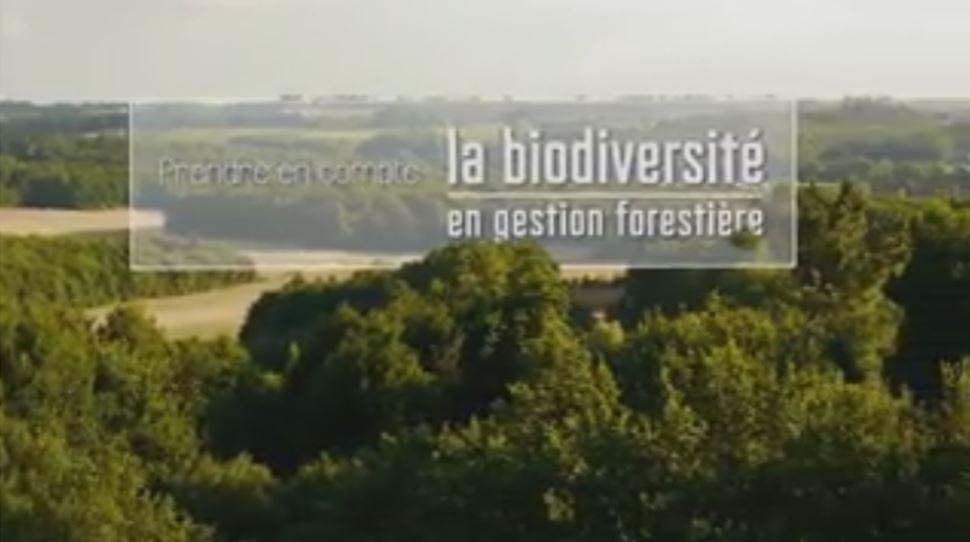 Prise en compte de la biodiversité dans la gestion forestière - Vignette