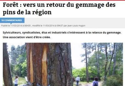 Sud-Ouest - GEMME la Forêt d'Aquitaine - 20140311 - Vignette 2