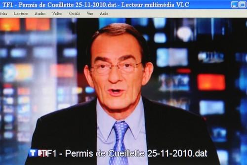 TF1 - Permis de Cueillette - Vignette