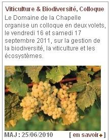 Viticulture et Biodiversité - Vignette