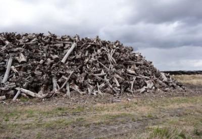 Le fumeux bois-énergie - s100576 - Vignette