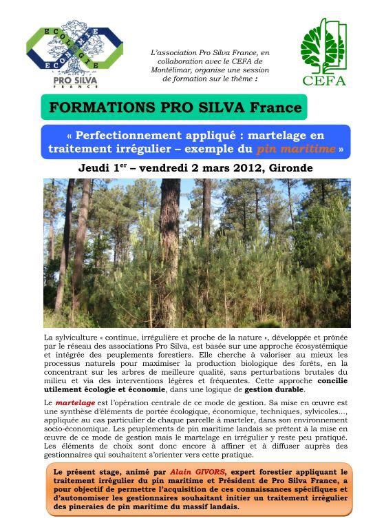 Pro Silva - Formations au martelage - Vignette 2