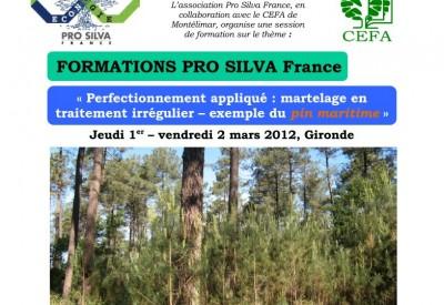 Pro Silva - Formations au martelage - Vignette