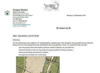 Dégradations en forêt - Exemple 3 - Jean-Luc D. - Vignette