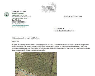 Dégradations en forêt - Exemple 5 - Victor A. - Vignette