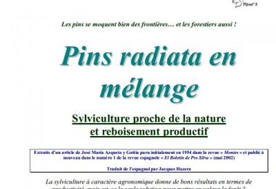Pins radiata en mélange - Vignette 2