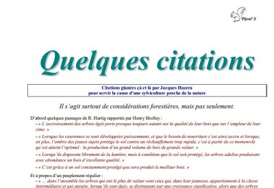 Quelques citations - Vignette 2