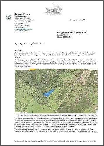 Dégradations en forêt - Exemple 7 - G.F. de C.E. - Vignette