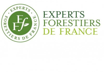 Experts Forestiers de France_LOGO et TEXTE