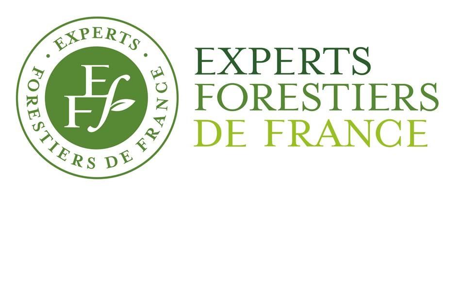 Experts Forestiers de France_LOGO et TEXTE