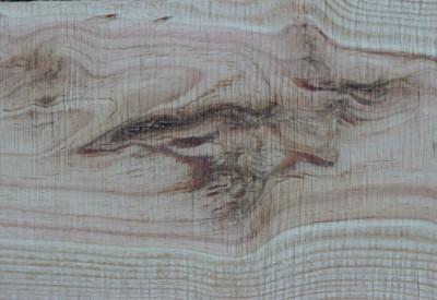 Le bois - Un matériau d'avant-garde - c204377 - Vignette