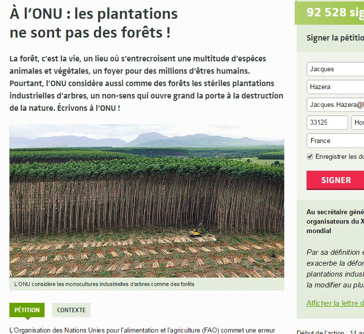 Pour l'O.N.U. les plantations ne sont pas des forêts - Vignette