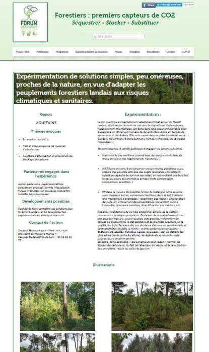 Forum forêt - COP 21 - Ma contribution - Vignette