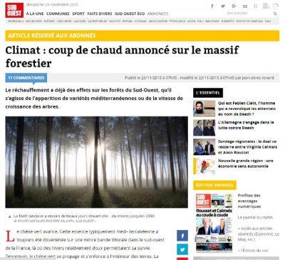 Sud-Ouest - Climat, coup de chaud annoncé sur le massif forestier - Vignette