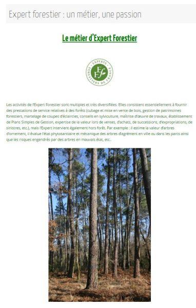 Expert Forestier - Un métier, une passion - Vignette 2