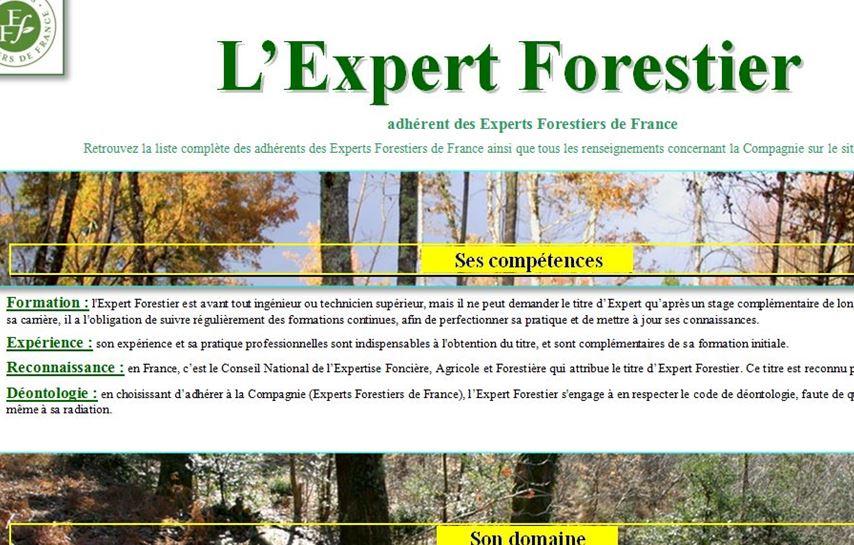 L'Expert Forestier - Vignette