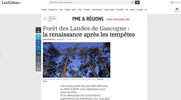 Les Échos - Forêt des Landes de Gascogne - Vignette