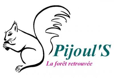 Pijoul'S - La forêt retrouvée (bleu-vert et rose) - 600