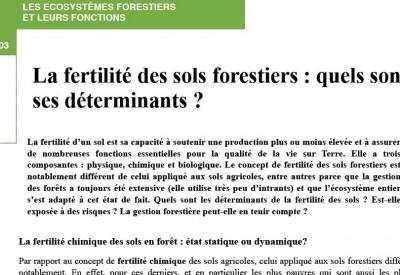 Jacques Ranger - La fertilité des sols forestiers - Vignette