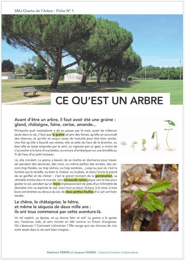 Charte de l'ARBRE de St-Médard - Fiches TECHNIQUES - Vignette