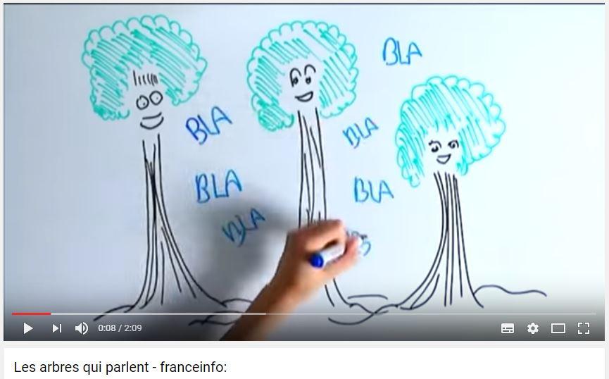 les-arbres-qui-parlent-vignette