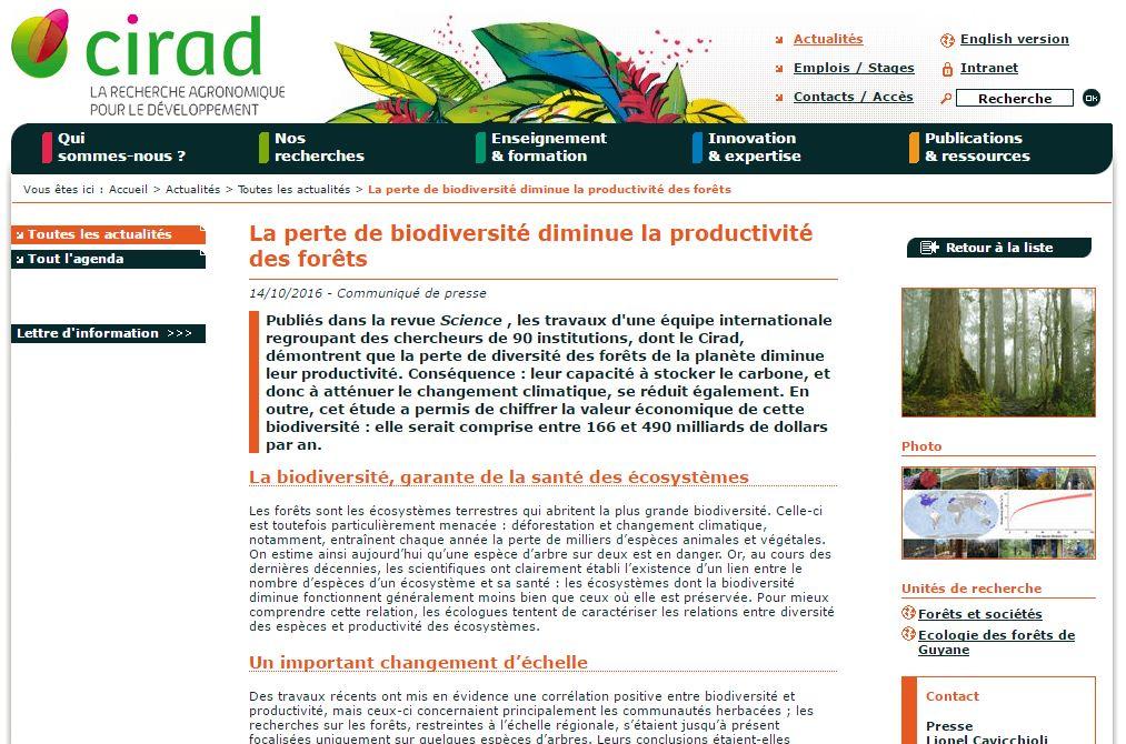 cirad-la-perte-de-biodiversite-diminue-la-productivite-des-forets-vignette