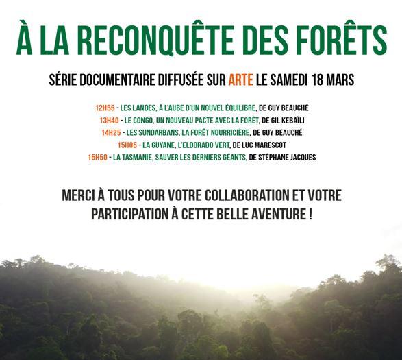 À la reconquête des forêts - Vignette