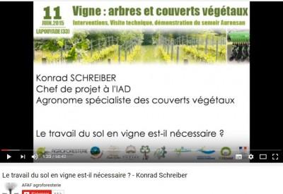 Le travail du sol en vigne est-il nécessaire - Konrad Schreiber - Vignette