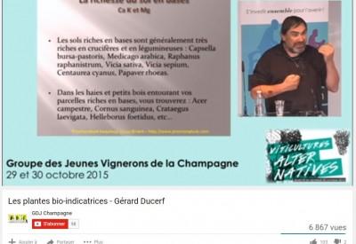 Géérard Ducerf - Vignette