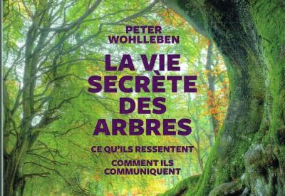 La vie secrète des arbres - Vignette