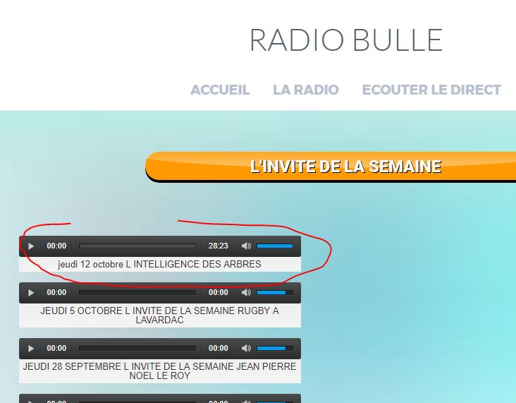 Radio-bulle - Vignette