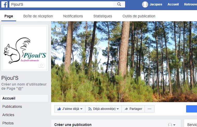 Facebook - Pijouls - Vignette