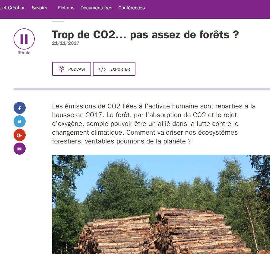Trop de CO2... pas assez de forêts - Vignette