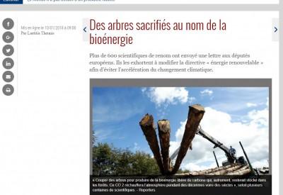 Des arbres sacrifiés au nom de la bioénergie - Vignette
