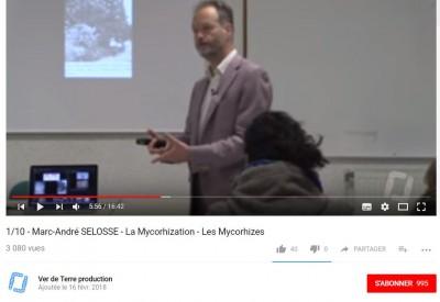 Marc-André SÉLOSSE - La mycorhization - Vignette