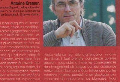 Trois questions à Antoine Kremer - Vignette