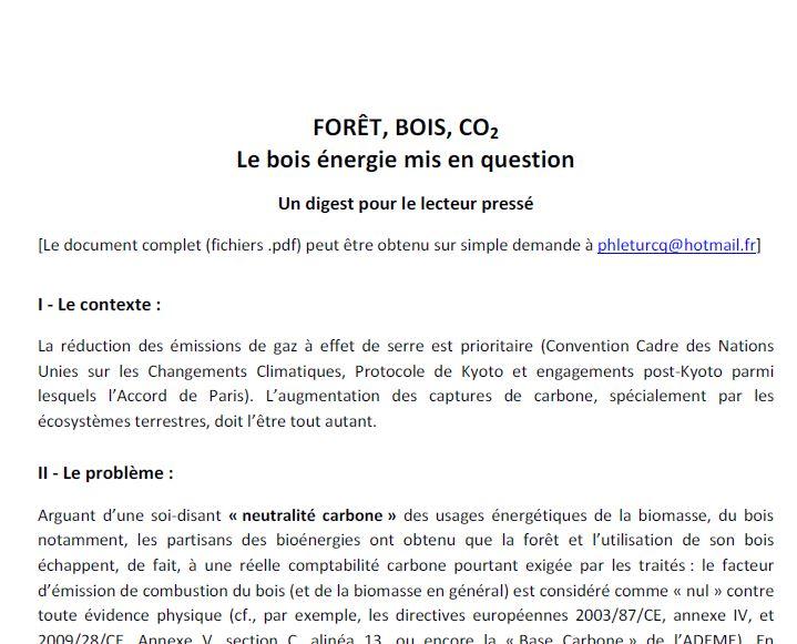 Boisenergie_Leturcq2018_Digest - Vignette