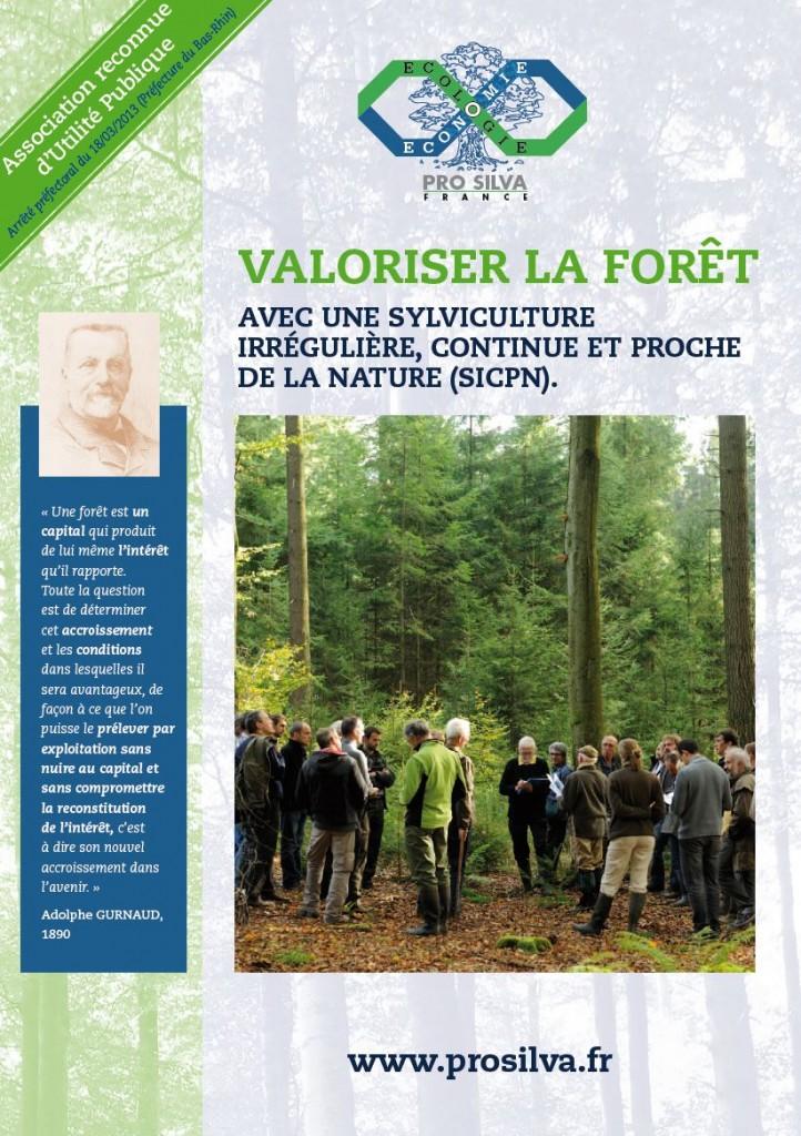Pro Silva - Valoriser la forêt - Vignette